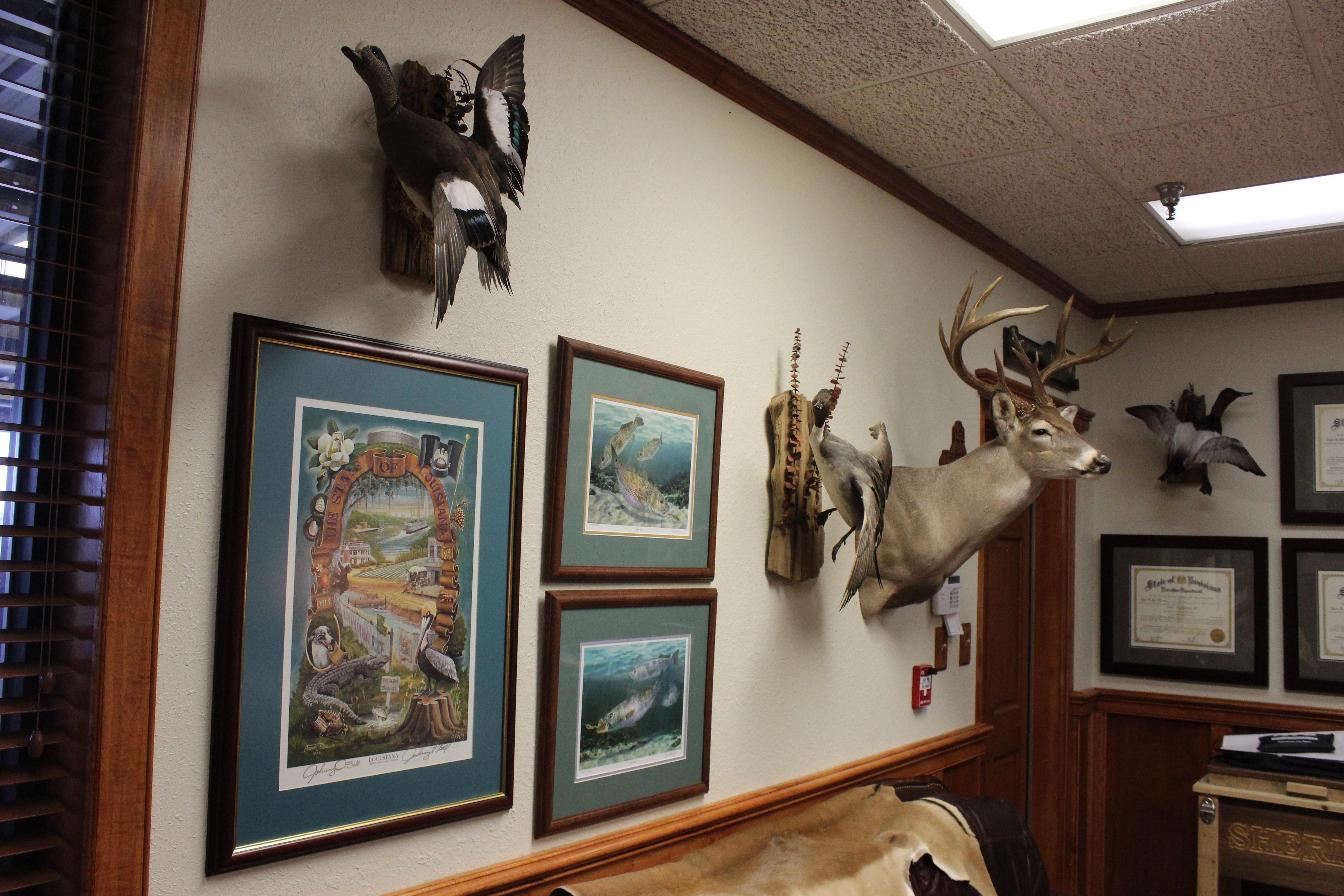 Sid's hunting trophies.